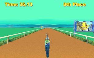 shark race