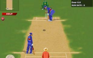 world cricket